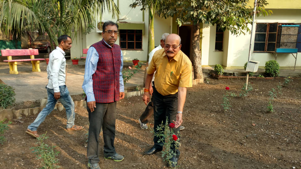 Guest-House-Premises-Cleaning-Gardening-IMG_20171207_153343965_HDR1-960-1.jpg